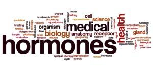 Hormones word cloud